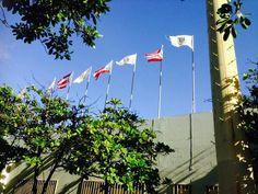 Museo de Deporte 8:42 a.m. domingo,  27 de octubre de 2013. En esta fotografía se puede observar varias banderas izadas, lo cual viola el código de banderas en varias formas. Esto se debe a que la bandera de Puerto Rico no puede ser utilizada con propósitos decorativos y ademas la única bandera que debe estar a la derecha de la de Puerto Rico es la e Estados Unidos. De igual forma la condición de las banderas estaba deteriorada, por lo que se requiere que se coloquen unas nuevas.