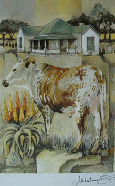 Lonely Nguni  » Click to zoom ->