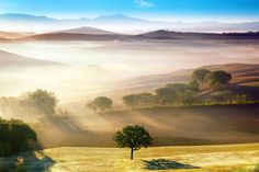 Tuscany, Italy | Discovered from Dream Afar New Tab