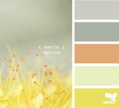 macro spring, by design seeds Colour Schemes, Color Combos, Color Patterns, Design Seeds, Paleta Pantone, Colour Board, Color Swatches, Color Stories, Mellow Yellow