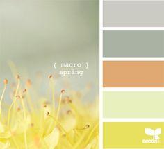 macro spring