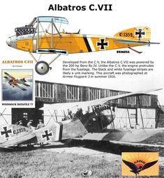 Albatros C.VIII