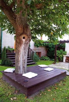 backyard ideas tree bench
