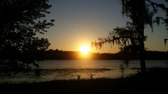 Bay Minette, AL - View of the Tensaw River at sunset.