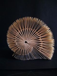 Garden snail or seashell? Folded book by Clara Maffei.