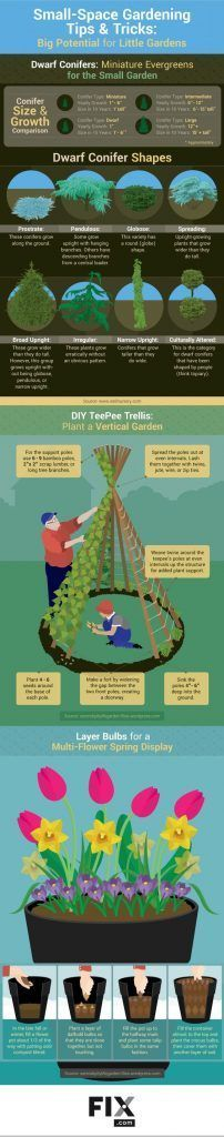 Small-Space Gardening Tips and Tricks: Techniques for Big Potential in Little Gardens #LittleGardenDesign