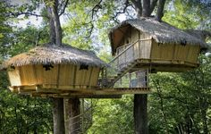 Tree House Cabins in Missouri | Tree House Cabins