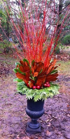 Flame willow glows a deep orange-red and is the perfect match with copper coloured magnolia and cedar. A custom design by The Branch Ranch. Christmas Yard Art, Christmas Planters, Christmas Crafts, Merry Christmas, Christmas Decorations, Xmas, Table Decorations, Holiday Decor, Winter Container Gardening