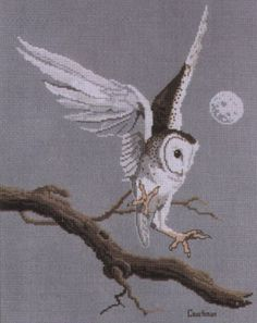 white owl in flight to branch, night, moon 1