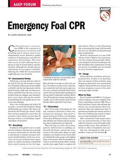 """[FREE REPORT] Emergency Foal CPR - TheHorse.com 