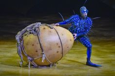 Cirque du Soleil's OVO - a colorful insect community  The Foreigner  Fly costume