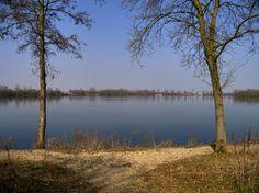 Ansicht auf den Baggersee im Frühling