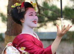 芸妓さんと舞妓さんのブログ (November 2015: senior maiko Mamefuji of Gion Kobu...)