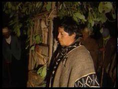 Medicina tradicional mapuche