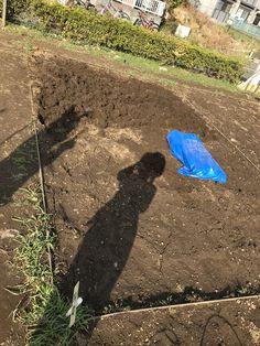 今日は畑の半分耕せた 1日の仕事が目に見えるってうれしい! それにしても先は長い〜