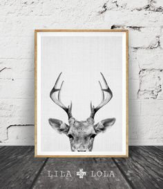 Deer Print Deer Antlers Woodlands Decor Wilderness by LILAxLOLA