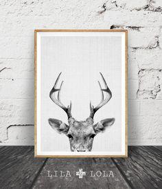 Deer Print, Deer Antlers, Woodlands Decor, Wilderness Wall Art, Nursery Black…