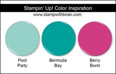 Stampin' Up! Color Inspiration: Pool Party, Bermuda Bay, Berry Burst