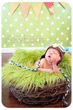 SET Lime Green Fur & Wood Branch Nest Owl Bird Photography Prop Newborn Baby