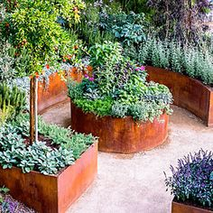 Potager Garden DIY Lawn Edging Ideas For Beautiful Landscaping: Bronze Raised Garden Edges with Patina Effect - Looking for a solution decorating your yard? Take a look at these 68 lawn edging ideas that I promise that they will transform your garden. Raised Bed Garden Design, Building A Raised Garden, Metal Raised Garden Beds, Metal Garden Edging, Metal Beds, Raised Vegetable Gardens, Vegetable Garden Design, Vegetable Gardening, Organic Gardening