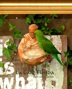 comedouros para passaros - SãoFrancisco  email:lacalleflorida@uol.com.br