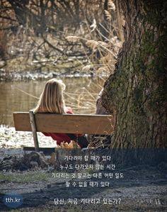 기다려야 할 때가 있다. 누구도 다가오지 않는 시간, 기다리는 것 말고는 다른 어떤 일도 할 수 없을 때가 있다.  그런 기다림의 시간을 겪어본 사람은 알 것이다.  그것은 형벌의 시간이며 동시에  축복의 시간이다.  당신, 지금 기다리고 있는가?   - 따뜻한 슬픔  #톡톡힐링