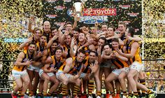 Hawks win 2015 Grand Final.