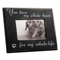 Found it at Joss & Main - Cat or Dog Wall Picture Frame