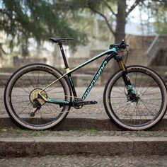 Xc Mountain Bike, Hardtail Mountain Bike, Mtb Bike, Bike Trails, Bicycle, Touring Bike, Bike Style, Cross Country, Triathlon