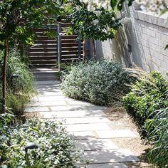 Sandstone Pavers, Garden Landscaping, Nativity, Garden Design, Entryway, Sidewalk, Bring It On, Street, Plants