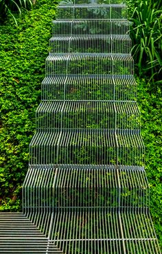 wire stairs over greenery