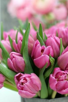 I found three pink flowers at the flower stall this morning - deep pink tulips, very light pink hyacinths and some rununculus in varyin. Yellow Tulips, Tulips Flowers, Exotic Flowers, Daffodils, Planting Flowers, Beautiful Flowers, Flower Market, Green Life, Flower Pictures