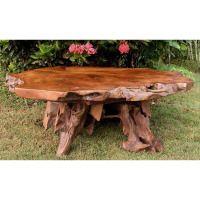 Bighorn Teak Root Coffee Table