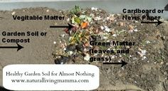 How To Build Up Your Garden Soil For Almost Nothing - Natural Living Mamma