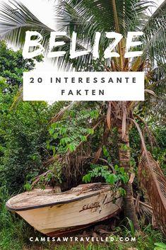 Belize - das karibische Traumland, in dem Englisch statt Spanisch gesprochen wird. Am Blog erfahrt ihr 20 interessante Fakten über das unterschätzte Land voller Reggae-Rhytmen, gegrillter Hummer und Mojitos! #karibik #reiseblog #belize #visitbelize #unbelizeable #belizeitornot Caye Caulker, Belize, German, Hotels, Cinema, Plants, Travel, Grilled Lobster, Small Places