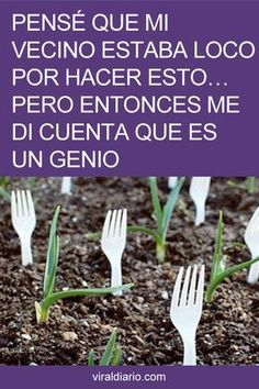 An organic garden requires a lot of time and attentive care to thrive. Green Garden, Garden Art, Home And Garden, Eco Garden, Garden Design, Gardening Gloves, Gardening Tips, Urban Gardening, Organic Gardening
