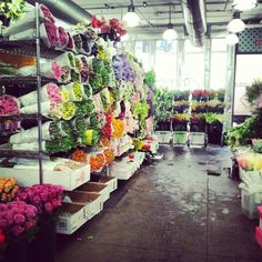NYC flower market shopping! #blissfulbloom