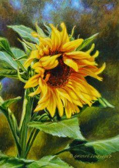 Sunflower Study 7x5, painting by artist George Lockwood