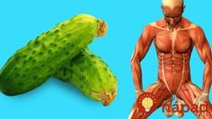 Since ancient times, cucumbers have been used in India in meals as well as in traditional medicine. This is because, in a warm country like India, cucumbers provide the necessary hydration and … Vitamins In Cucumbers, Nutrients In Cucumber, Cucumber Health Benefits, Top Models, Negative Effects Of Stress, Low Calorie Fruits, Yoga Position, Vitamin C And Zinc, Bone Fracture