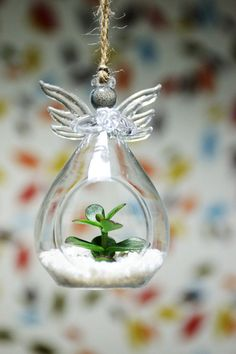 Planters – Angel Glass Hanging Planter Succulent Terrarium – a unique product by DingaDing on DaWanda