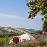 Kleine Boerencamping in Le Marche, Italie