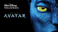 Exciting update on #Disney AVATAR Land. Read: http://www.disneytouristblog.com/avatar-land-disney-world-animal-kingdom/