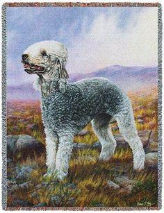 Bedlington Terrier (Tapestry Throw)