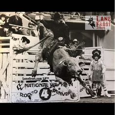 Here's an awesome photo of by Jerry Gustafson at Lane Frost Quotes, July In Cheyenne, Rodeo Cowboys, Rodeo Life, Bull Riders, Cowboy And Cowgirl, Monochrome Photography, Wild West, Denver Colorado
