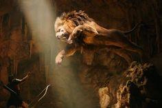 The Legend Of Hercules, Hercules Movie, Joseph Fiennes, Lion Images, Lion Pictures, Lion Hd Wallpaper, Wallpaper Desktop, Personal Development, Mad World