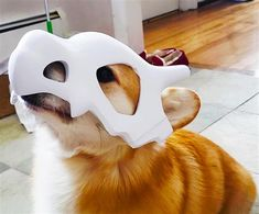3ders.org - Pokémon lovers: make this 3D printed Cubone mask for your dog | 3D Printer News & 3D Printing News