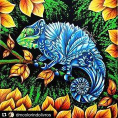 florestaencantada2 Posts On Instagram   Vibbi