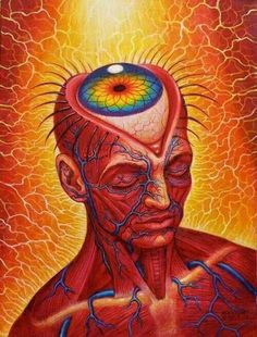 [Tome] | Inducing A Psychedelic State Without Psychedelics: Inside... - TIMEWHEEL