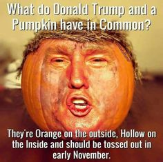 'Donald Trump/Pumpkin' Canvas Print by Balzac Donald Trump, Trump Pumpkin, Pumpkin Canvas, Funny Memes, Hilarious, Funny Quotes, Jokes, It's Funny, Political Cartoons