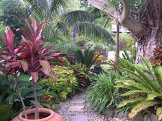 My Bali Garden